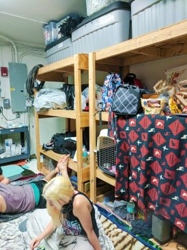 Of the 20 emergency shelters opened to Sarasota residents, only five opened their doors to cats and dogs. Photo courtesy of Nalani Simpson.
