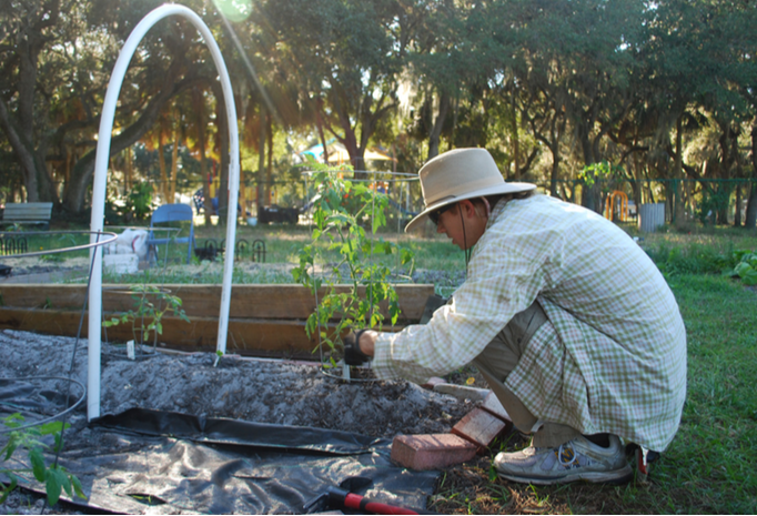 Conversations with gardeners at Orange Blossom Community Garden