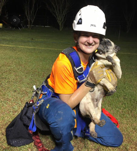 And that's the way the Cookie tumbles: 10-year-old pug falls into sinkhole