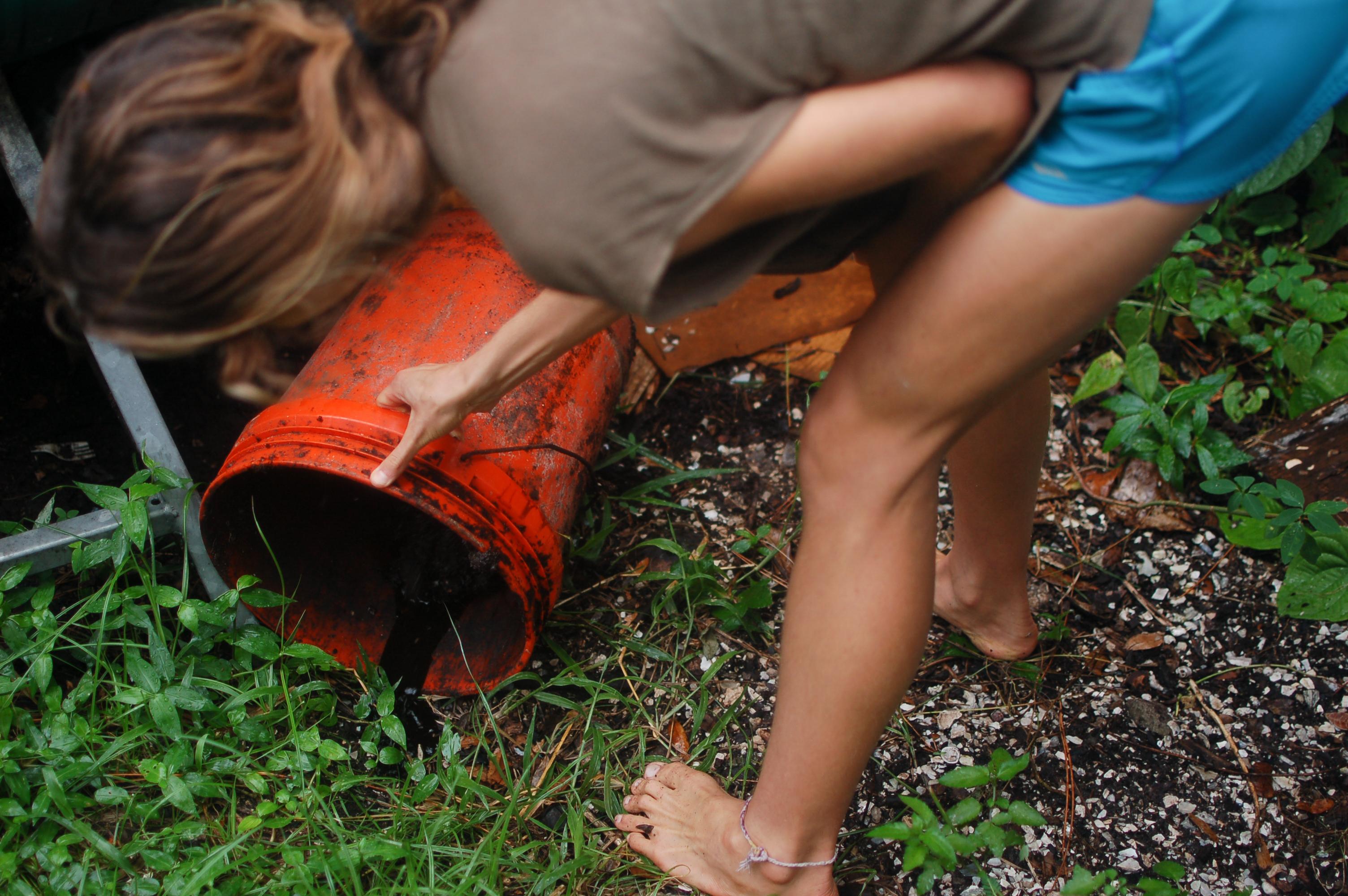Compost, condoms and coconuts: Compost tutorial keeps campus green