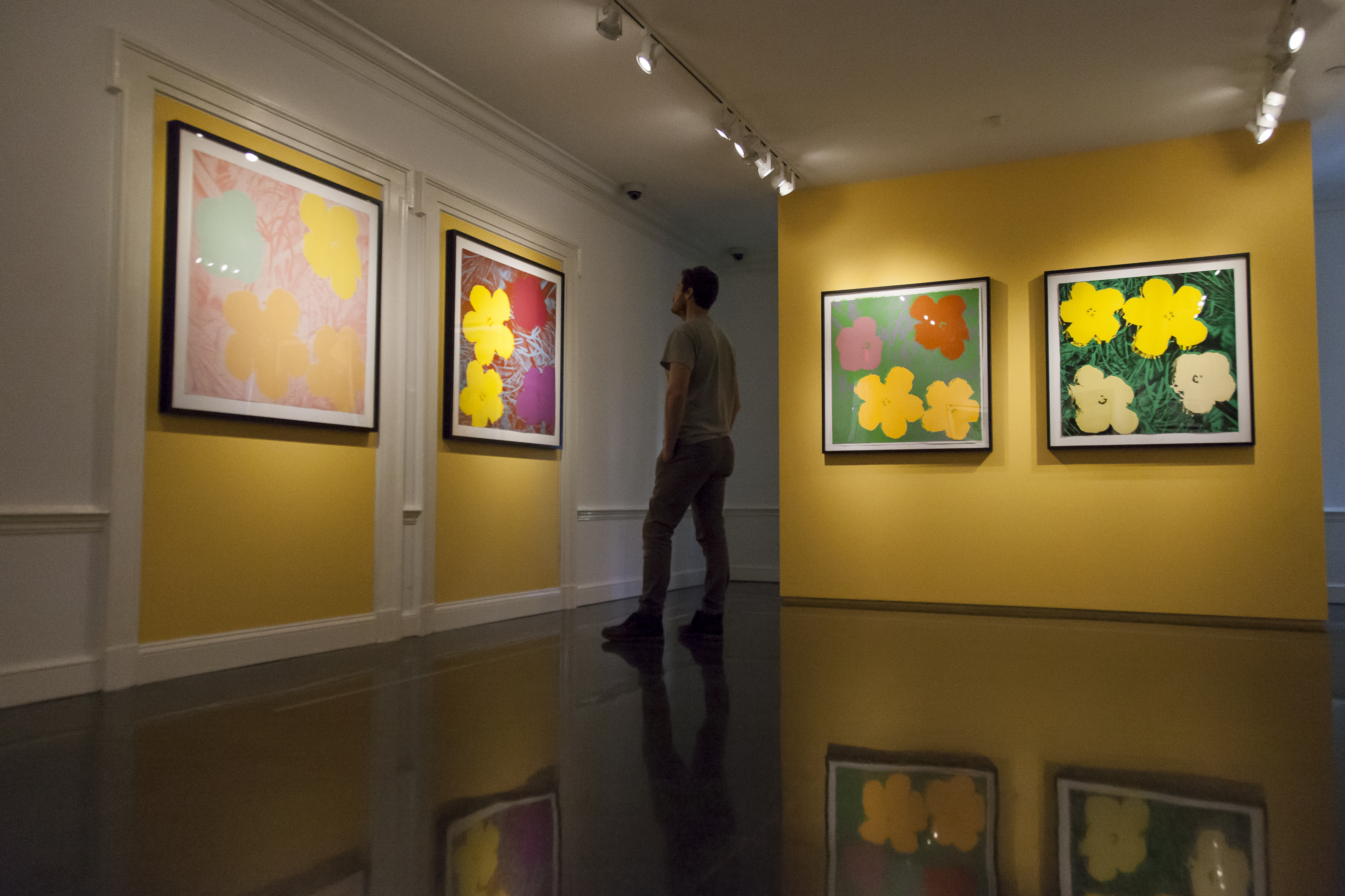 Warhol at the Selby Gardens: a new spin on an old name