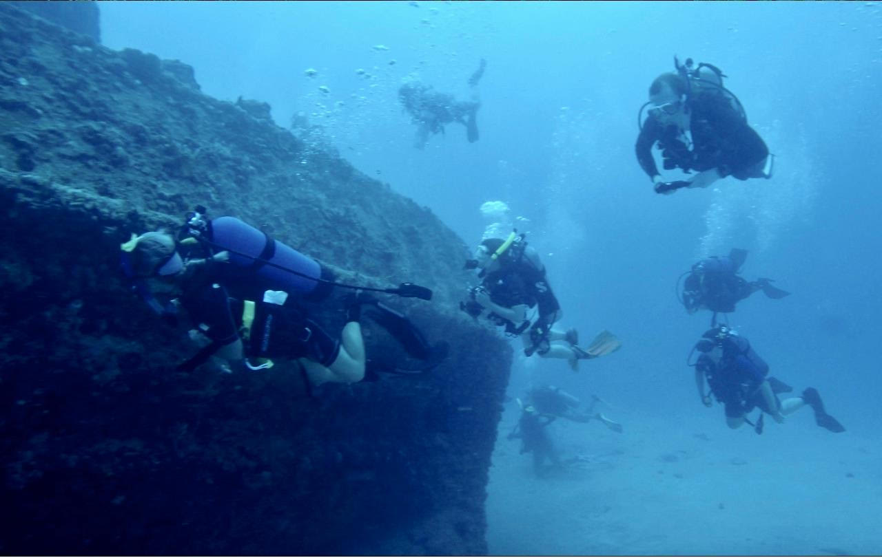 Bull Sharks diving club allows students to explore ocean waters