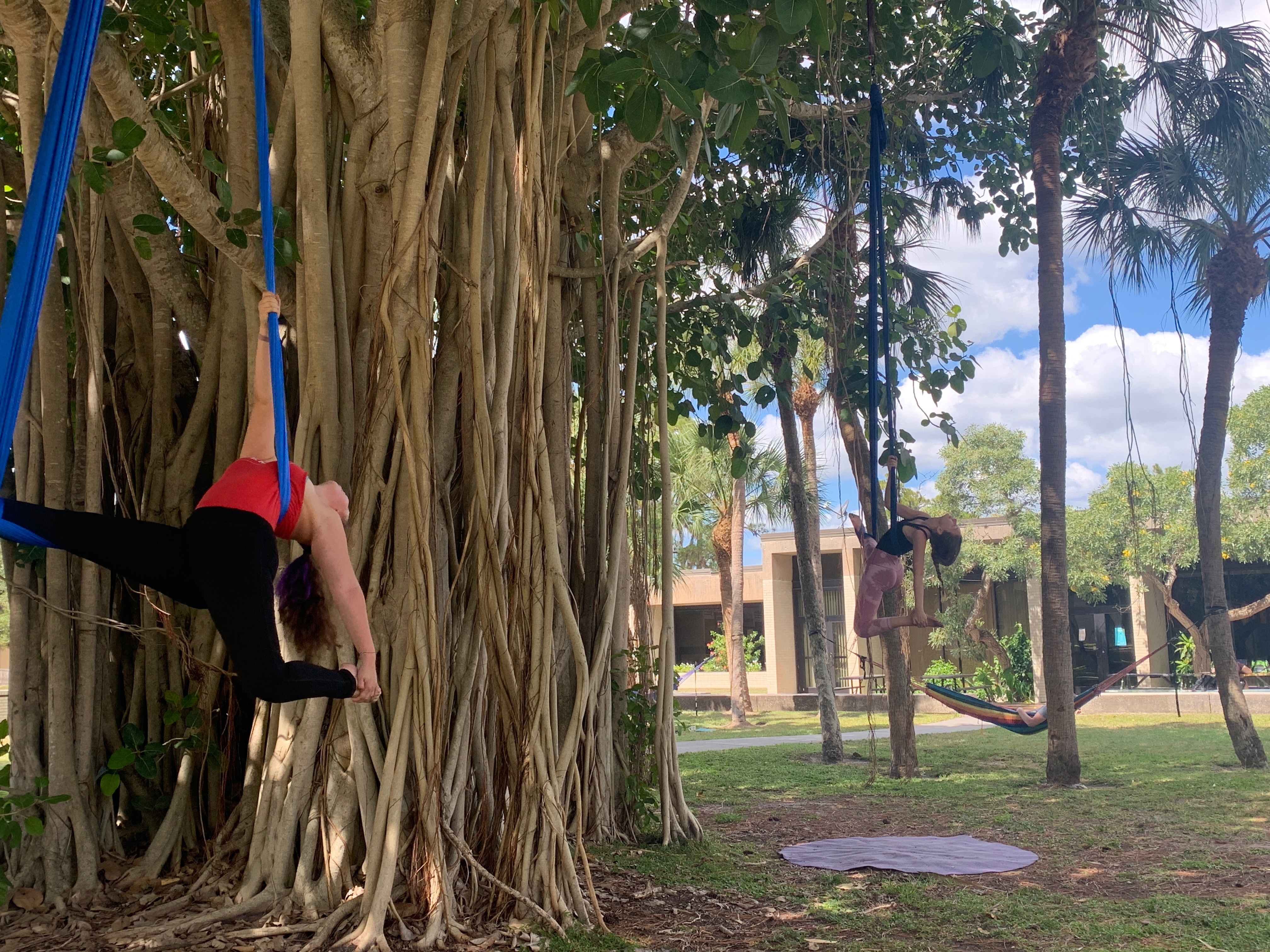Spiraling away on silks and swings with the aerial club