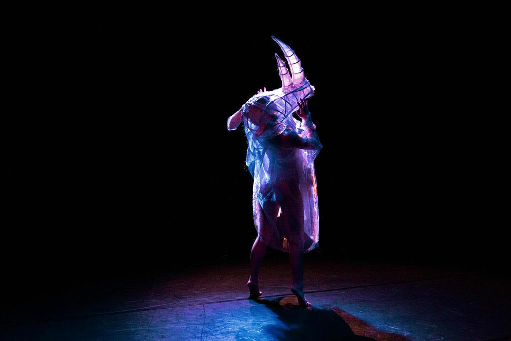 RHINO Project examines human impact through contemporary dance