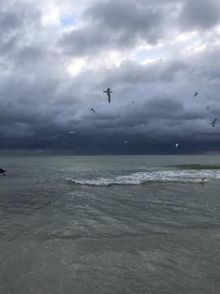 Tracking Hurricane Eta